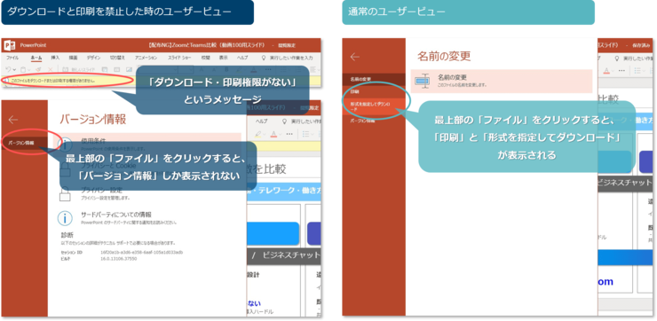 filesharing-userview-min.png